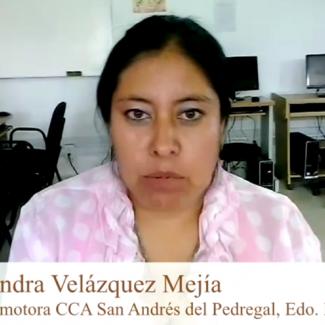 Sandra Velázquez - CCA San Andrés del Pedregal